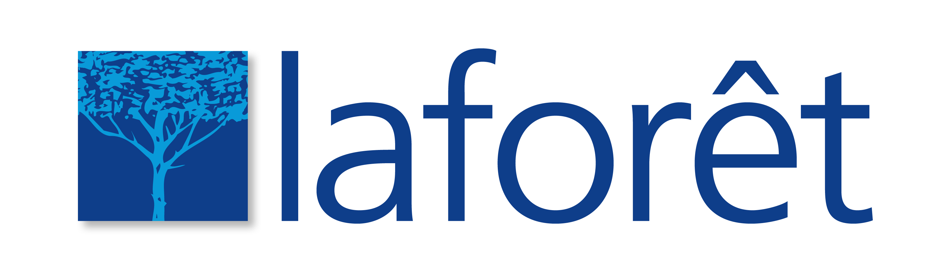 Logo-Laforet-Long-Ombre Fond clair